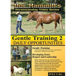 Gentle Training 2: Daily Opportunities
