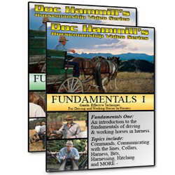 Fundamentals 1 and 2