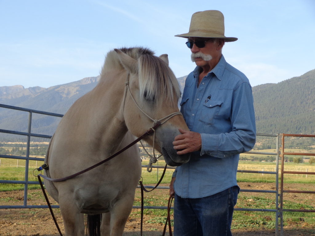 Photo of a man with hand on horse's muzzle
